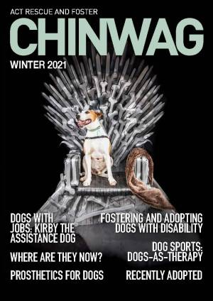ChinWag Winter Cover Image