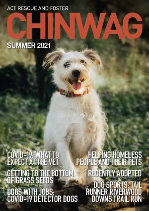 Cover Page ChinWag Summer 2021