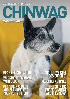 Cover Page ChinWag Winter 2020